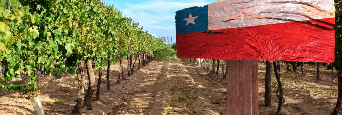 Частные экскурсии в Чили с русскими гидами