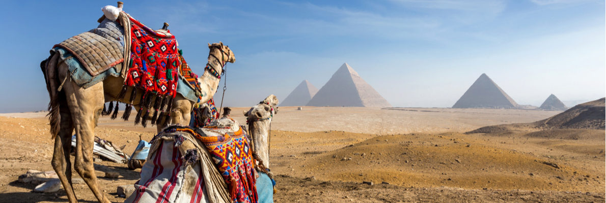 Private tours in Egypt with tour guides