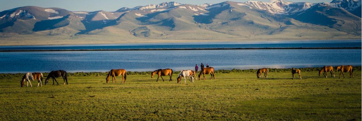 Частные экскурсии в Киргизии с русскими гидами