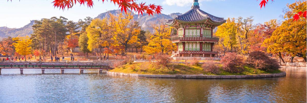 Частные экскурсии в Южной Корее с русскими гидами