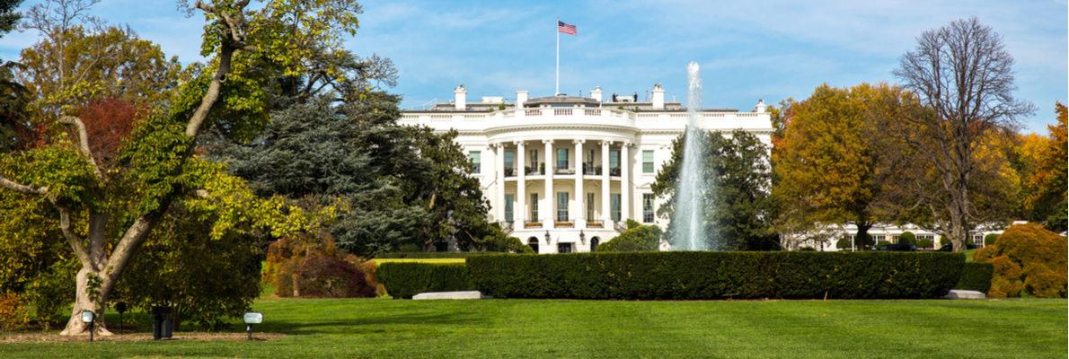 русские гиды в Вашингтоне
