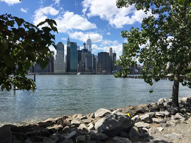 Уголок парка в Нью-Йорке