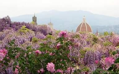 Пейзаж Флоренции