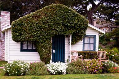 Зелёная зона у домов в Кармеле