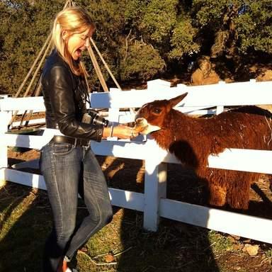 Кормление животных на ранчо