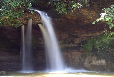Живописные водопады в лесу