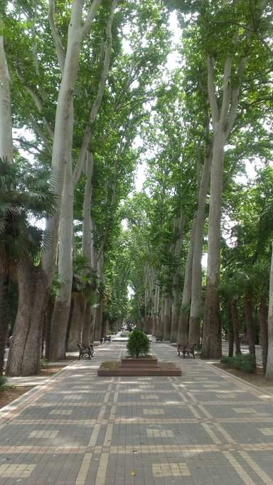 Ханский сад