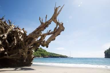 Остров Лембонган