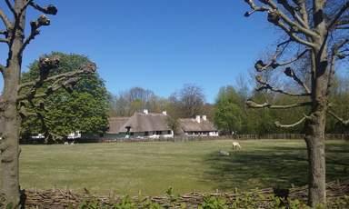 Датская деревня. Общий вид