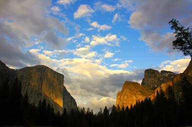 Пейзаж в парке Йосемити