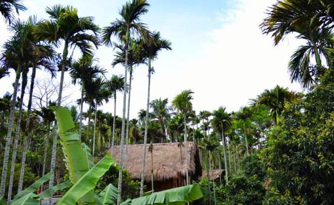 Этнографическая деревня народностей Ли и Мяо