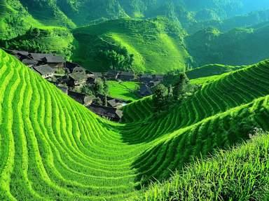 Рисовые поля в Гуйлине