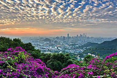 Панорамный вид на Гуанчжоу