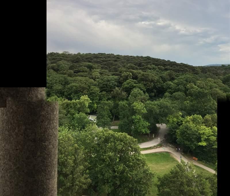Вид на Венский лес