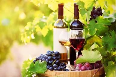 Урожай винограда в долине Ярра