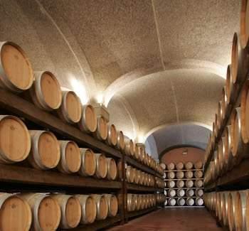 Бочкохранилище производителя вин Арджолас