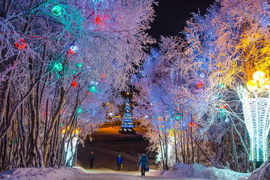 Парк у Семёновского озера