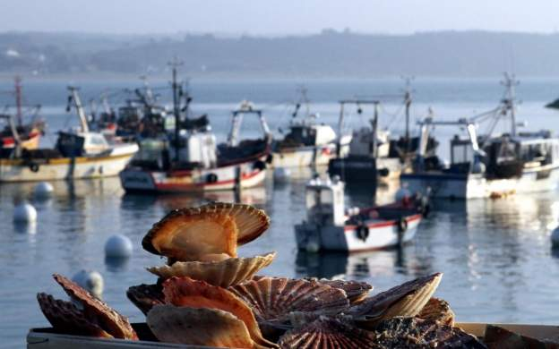 Городок Дьепп - столица промысла морских гребешков