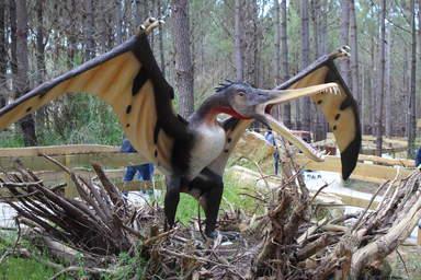 А такие летали Сеарадактилуш Размах крыльев -4 метра 15 кг