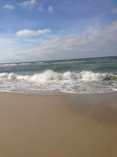 Куршская коса пляж с янтарем