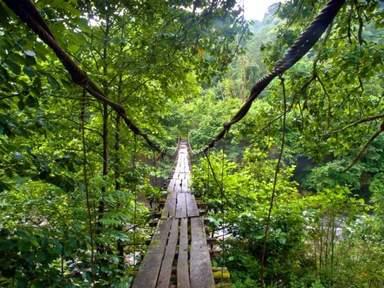 Накиданный  мост