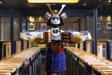 Хаями робот