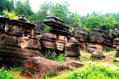 Каменный лотос