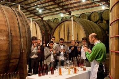 Дегустация итальянских вин