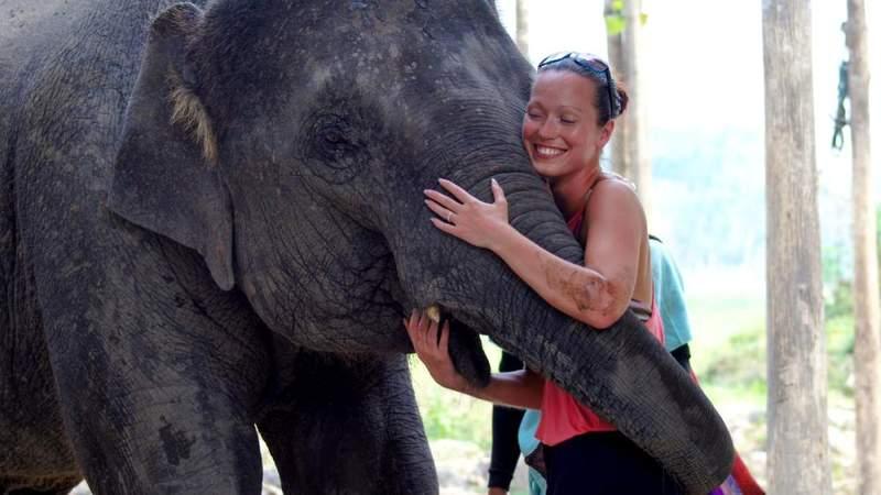 Шоу со слоненком