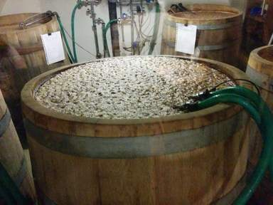 Процес ферментации или брожение пива в дубовых бочках