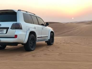 Настоящий верблюд в пустыне