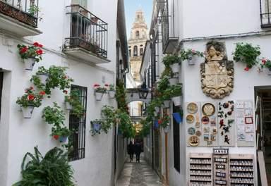 Цветочный переулок