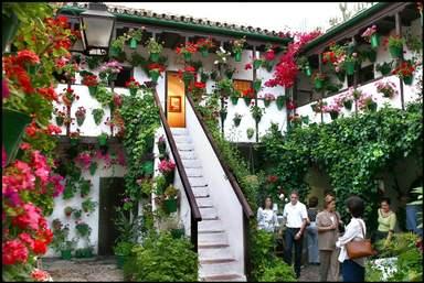 Цветочные дворики