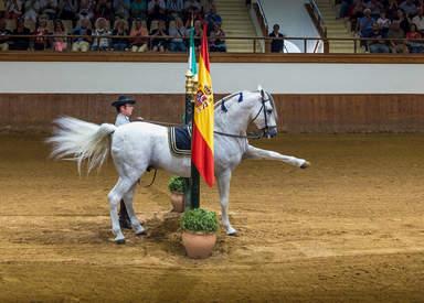 Танец андалусских лошадей