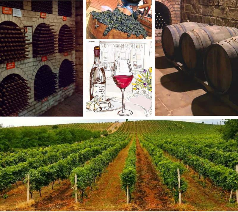 Винодельня Исмаиллы