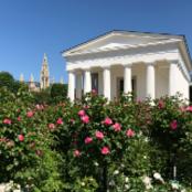 русскоговорящий гид в Австрии - Vienna AT