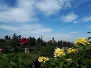 Вид на Альгамбру с садов Хенералифе