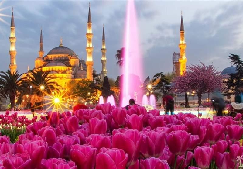 Тюльпаны на Площади Султанахмед
