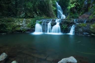 Национальный парк Дейнтри форест