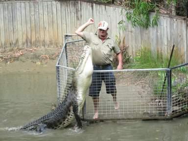 шоу на крокодиловой ферме в Дейнтри форест
