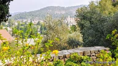 Иерусалим цветущий