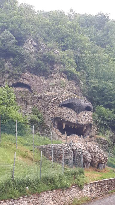 Лев в селе Цовин кар