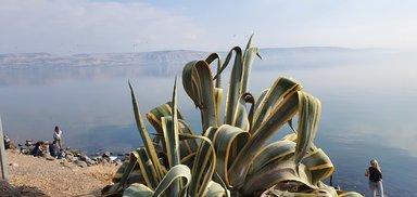 Галилейское море, где Иисус ходил по воде яко по суху