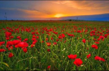 Ивановка весной