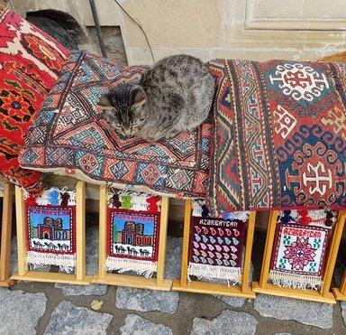 Изделия народных мастеров и домашний кот