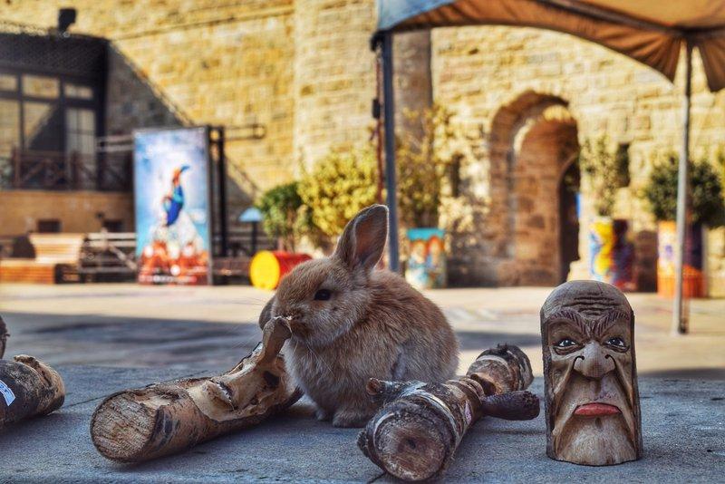 Баку, Апшерон и древние селения Азербайджана/история, кухня и дивная природа