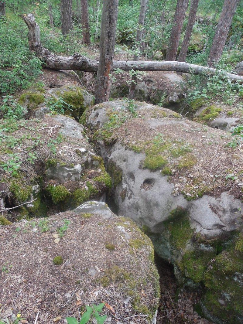 Валуны в Рачейском бору