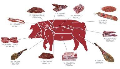 Схема разрува иберийской свиньи