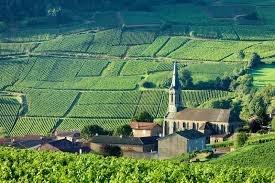 Знаменитые Бургундские виноградники