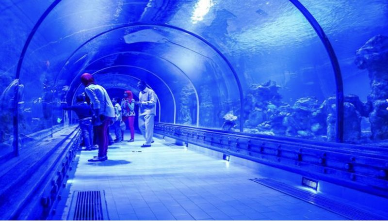 Гранд аквариум